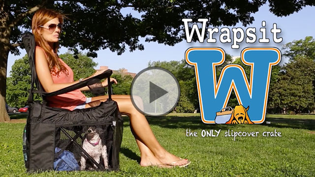 Crowdfunding Video Example: Wrapsit