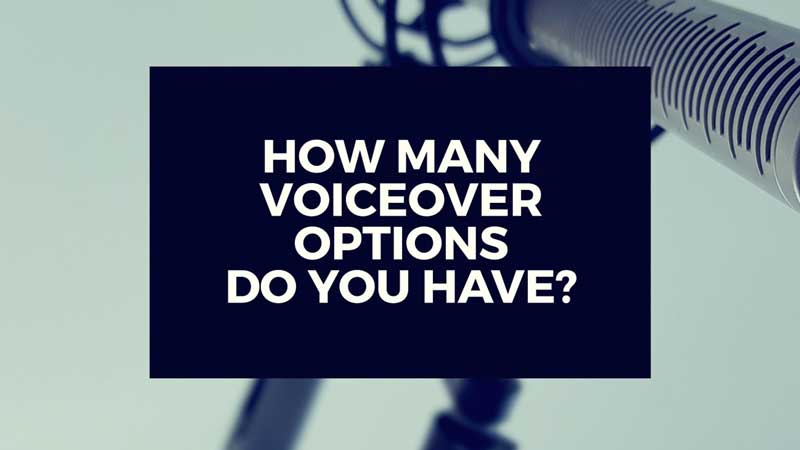 "image with text ""How many voice over options do you have to choose from?"""